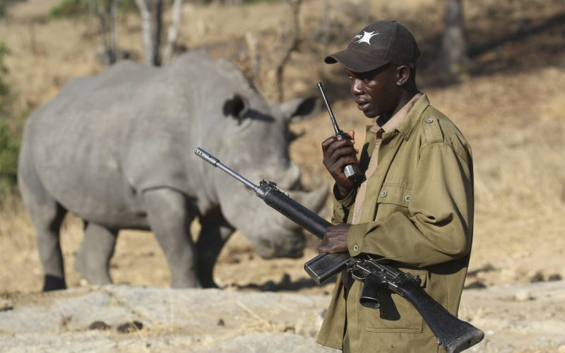 Money from tourism goes directly to anti-poaching.