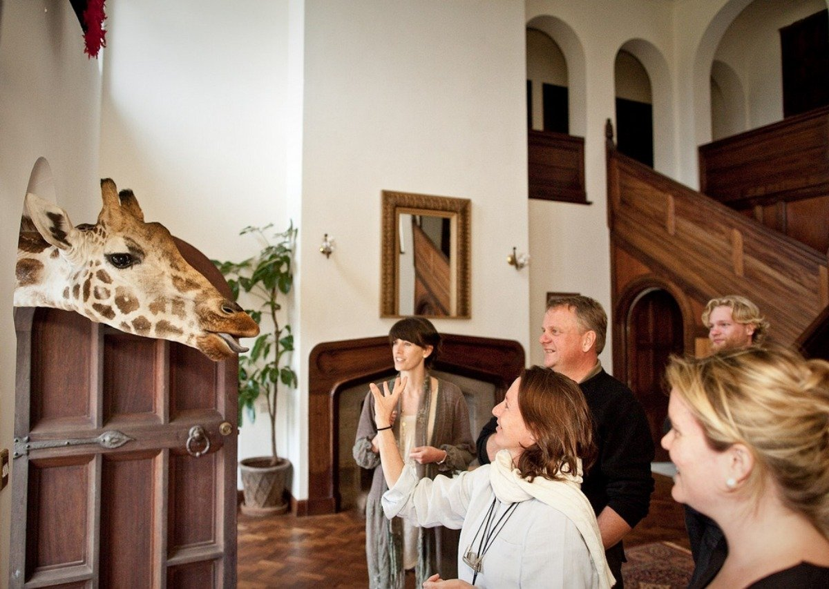Guests are encouraged to interact with the giraffes.