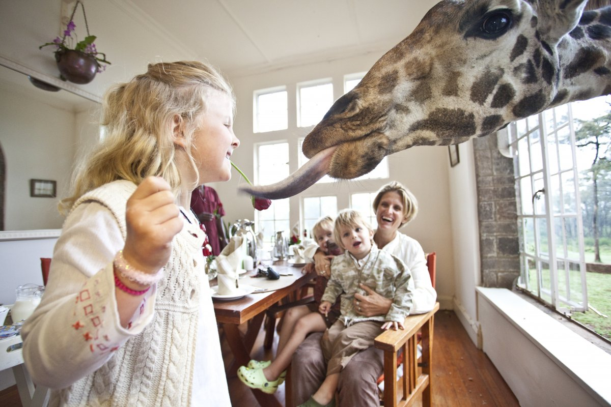 You may not have known that giraffes love kisses.